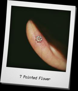 7 Pointed Flower