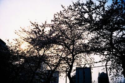 渋谷一丁目